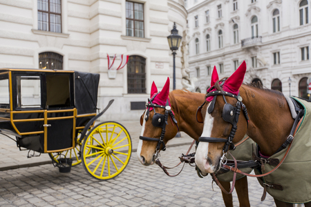 Horse chariots in front of Hofburg palace in Vienna, Austria