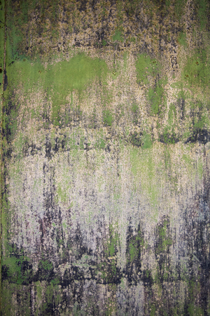 Closeup view of the decayed old green wal