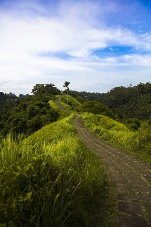 Campuhan Ridge hiking trail in Ubud, Bali, Indonesia