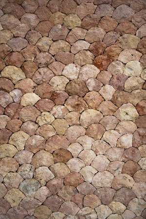 Closeup of the scale stone wall backdrop