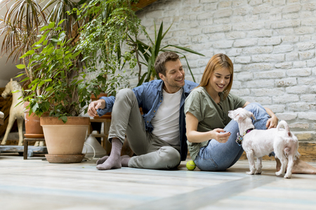 Lovely young couple sitting at rustic living room floor and playing with cute white dog Banque d'images - 123952075