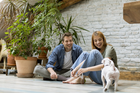 Lovely young couple sitting at rustic living room floor and playing with cute white dog Stock Photo