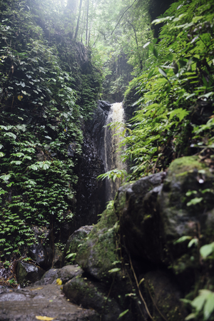 Detail of the Gitgit waterfall at Bali, Indonesia