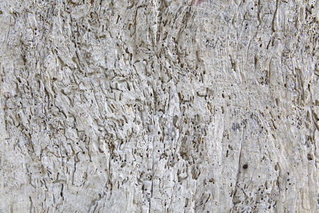 Closeup of the old gray cracked wood texture background Banque d'images - 124400271