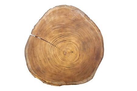 Großes kreisförmiges Stück Holzquerschnitt mit konzentrischem Baumring-Texturmuster isoliert auf weißem Hintergrund