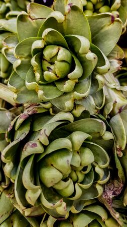 Close up view at fresh organic artichokes on market
