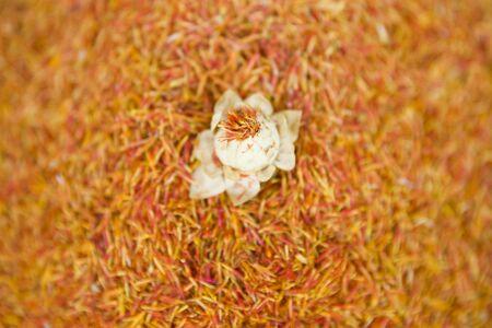 Closeup detail of the turkish saffron spice