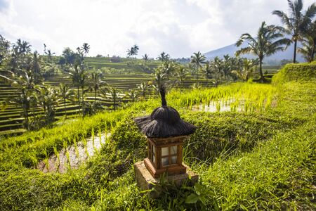 Small altar at rice fields of Jatiluwih in southeast Bali, Indonesia