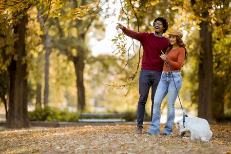 Multiracial young couple walking with dog in autumn park Stock Photo