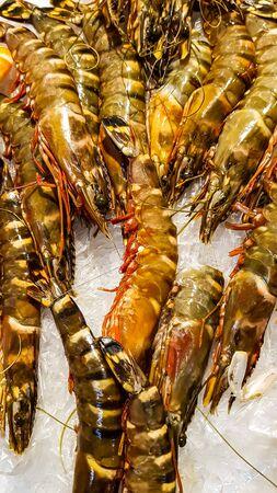 Fresh giant prawns at the fish market Stok Fotoğraf
