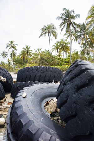Used truck wheels in the tropical forest as pollution concept Stock Photo