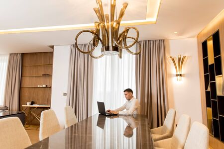 Handsome young man sitting in a luxurious room in front of a laptop computer