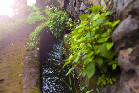 Closeup of the small irrigation channel at the farmland