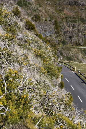 View at mountain road on Madeira Island, Portugal