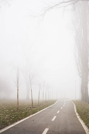 View at bike path in the foggy winter day