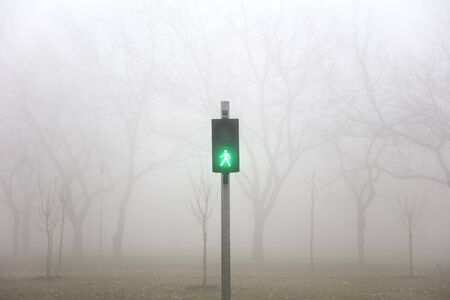 View at traffic lights in the foggy winter day