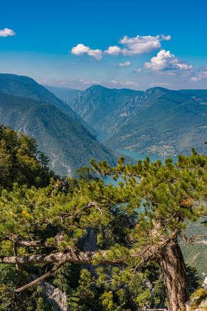 View at Perucac lake and river Drina from Tara mountain in Serbia 免版税图像