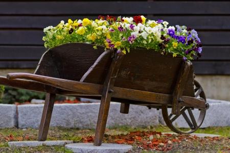 Very old wheelbarrow with flowers