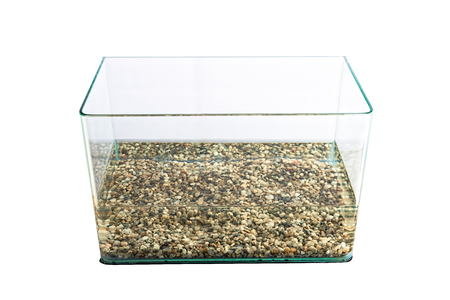 freshwater aquarium plants: Empty water tank (aquarium) Stock Photo