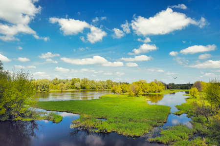 River flood waters background, Narew, Poland Stock Photo - 9741739