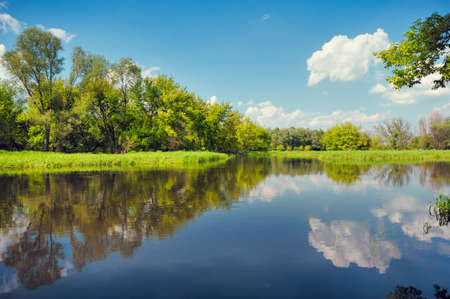 Vloedwaterenbehang, Narew-rivier, Polen Stockfoto