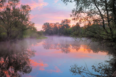 The morning landscape with fog and warm pink sky over the Narew river, Poland