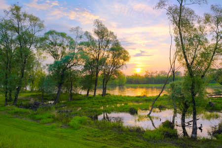 Landscape with sunrise over the Narew river, Poland  photo