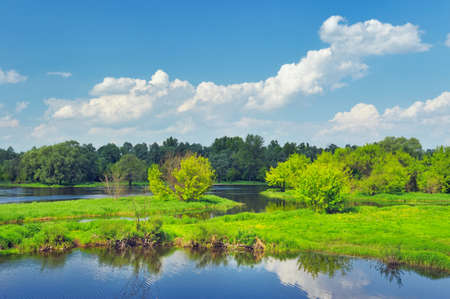 Rural landscape with flood waters of Narew river, Poland  Beautiful wallpaper  photo