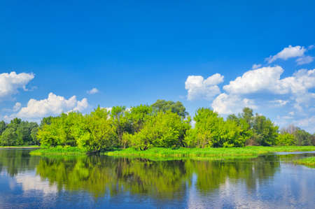 narew: Landscape with flood waters of Narew river in Poland with clean blue space for text