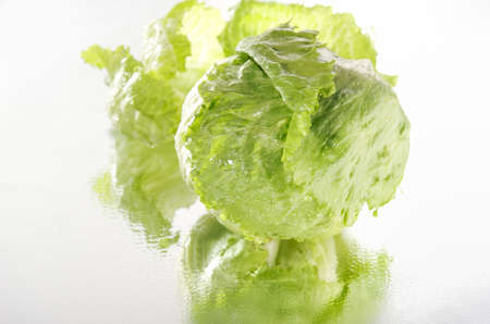 Fresh iceberg lettuce reflected in the mirror photo