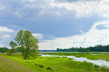 The last wild places  Cloudy landscape with flood waters of Narew river  photo
