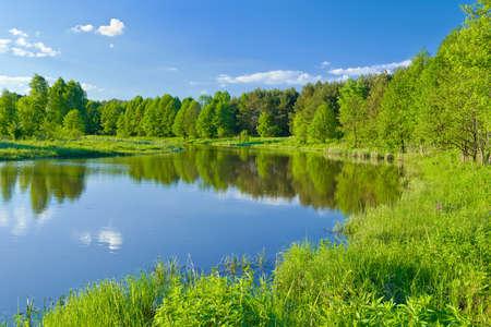 The last wild places  Landscape with Narew river Banco de Imagens - 20059166
