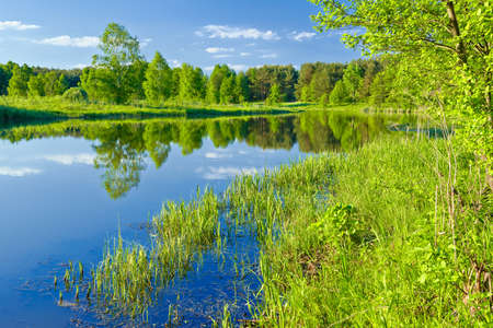 The last wild places  Landscape with Narew river  photo