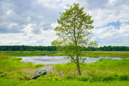 Landscape with lonely tree and boat with flood waters of Narew river  photo