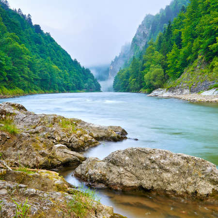 The gorge of mountain river in the morning  Dunajec, Pieniny  版權商用圖片