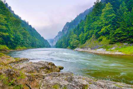 The gorge of mountain river in the morning  Dunajec, Pieniny Foto de archivo