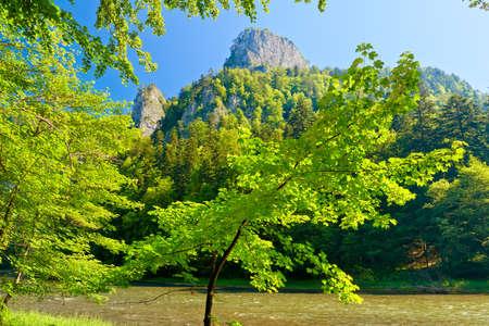 Beautiful landscape with the gorge of mountain river  Sokolica, Pieniny, Dunajec