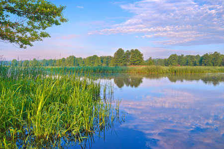 Beautiful morning landscape with flood waters of the Narew river  photo