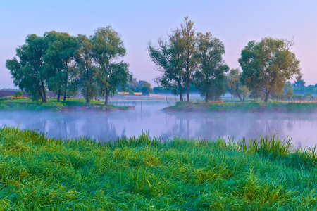 Beautiful morning with trees on the riverside of the Narew river  Country landscape
