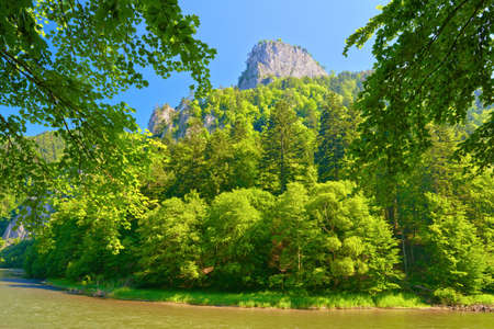 defile: Peak of the Sokolica mountain in Pieniny, Poland  National border  View from Slovakia