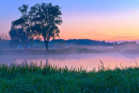 Beautiful foggy dawn over the Narew river  Mazovia, Poland