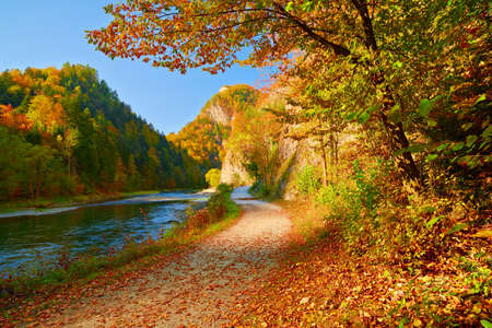 Dunajec 강 협곡 Pieniny 산 가을 풍경 슬로바키아에서보기 스톡 콘텐츠