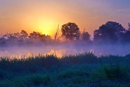 Beautiful foggy sunrise over the Narew river  Mazovia, Poland