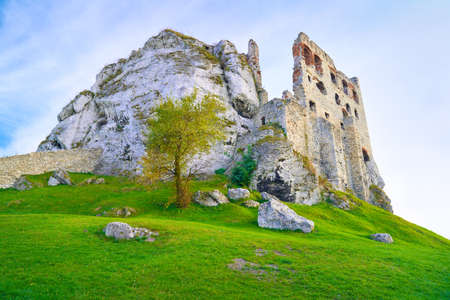 Ruins of the old medieval Ogrodzieniec Castle in Poland  Krakow-Czestochowa Upland, Trail of the Eagles Nests at Polish Jurrassic Highland  photo
