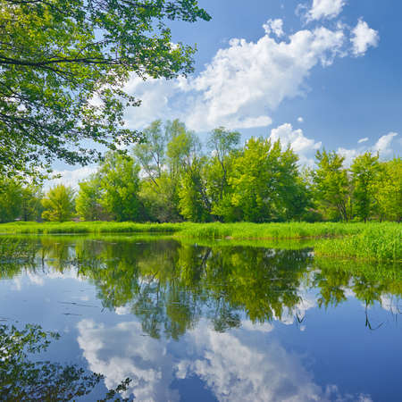 narew: Sunny spring landscape by The Narew River. Mazovia, Poland. Stock Photo