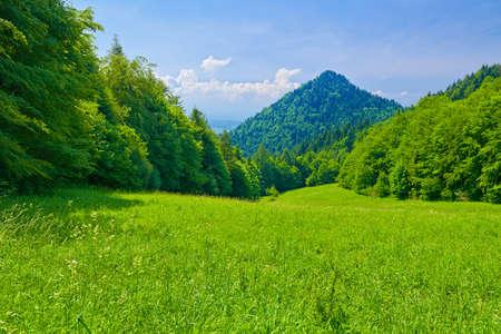 Sunny landscape. View from mountain range. Pieniny Mountains in Poland. The Szopka Saddle.
