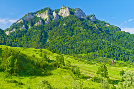 The Three Crowns massif in The Pieniny Mountains range  Spring landscape by the nature reserve