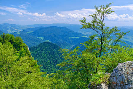 defile: Spring landscape in The Pieniny Mountains National park, Poland. View from The Three Crowns massif. Nature reserve. Stock Photo