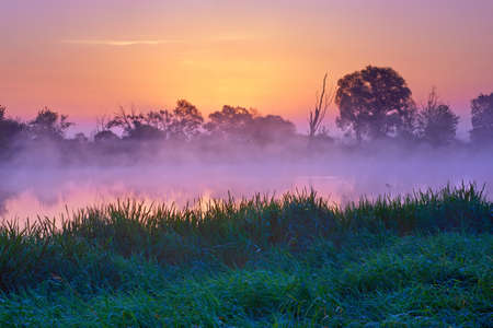 Beautiful dawn over  The Narew River, Poland. Nature reserve. Foggy morning landscape just before sunrise. photo