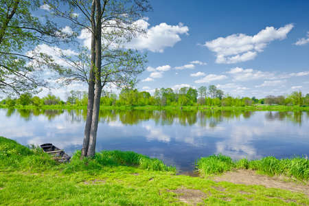 Sunny summer landscape  Trees and Boat at riverbank  Valley of The Narew River, Poland  Banco de Imagens